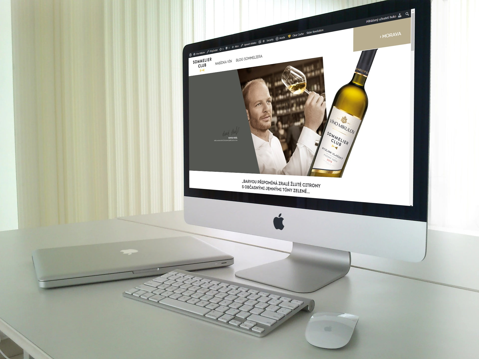 Making website from graphic design for winery Víno Mikulov 1